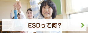 ESDって何?